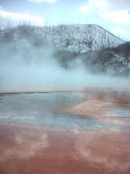Thermal Area, Yellowstone Park, USA (Wyoming)